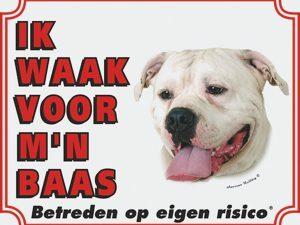 Wit waakbord Argijntijnse Dog NL