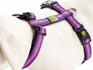 Harnas Booster Purple M nek 36-58cm borst 54-69cm