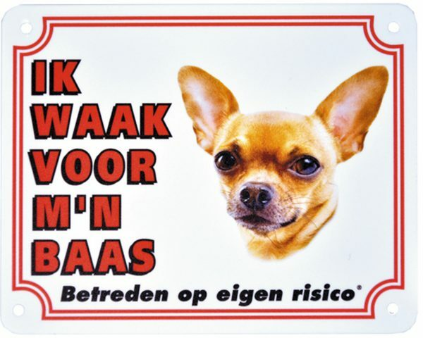 Waakbord  Chihauhua kortharig NL