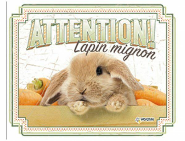 Waakbord konijn FR