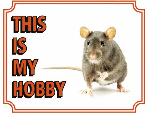 Waakbord PVC Rat EN