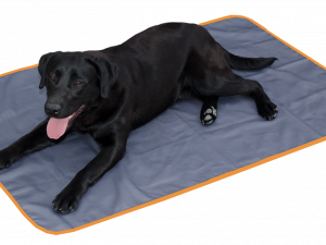 Bodyguard Dog Blanket Grey