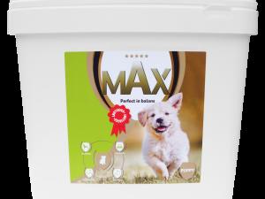 p16719  maxa002c max puppy 1