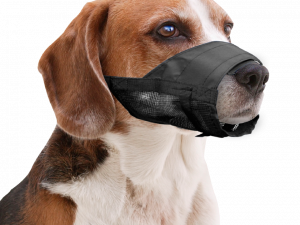 Pawise Muzzle Adjustable S