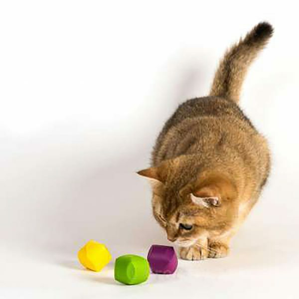 Jackson Galaxy Cat Dice 3pk