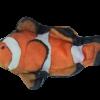 Wild Life Cat Clownfish (Clownvis)