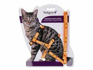 Harnas+Leiband Kitty Cat oranje 22/32cm+120cm