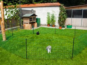 p22226  nett02801 net afrast konijn 65 cm enkelpunt 12 m. 1