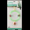 Bird squatting circle