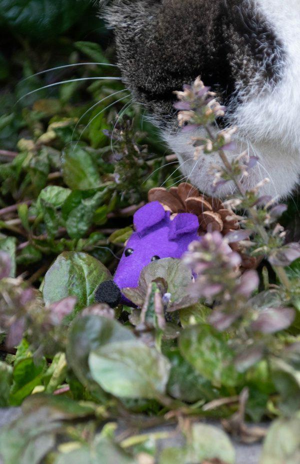 Forest Friends Mouse Purple