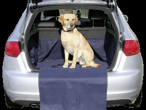 Autodekens en beschermingsdoeken