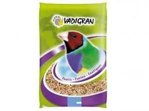 Premium Vogel